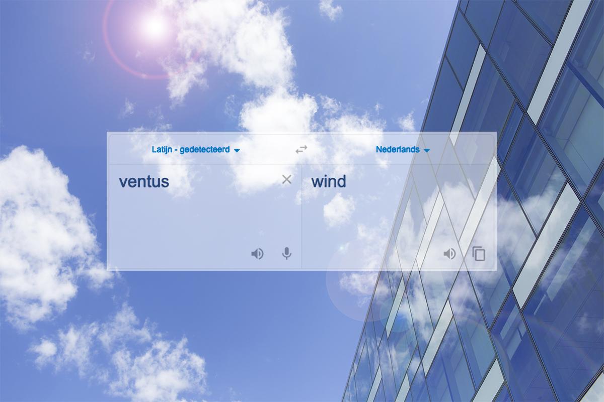 Ventus betekent wind. Ventus staat voor een frisse wind.